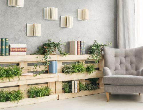 Decoración con plantas de interior para crear espacios vivos