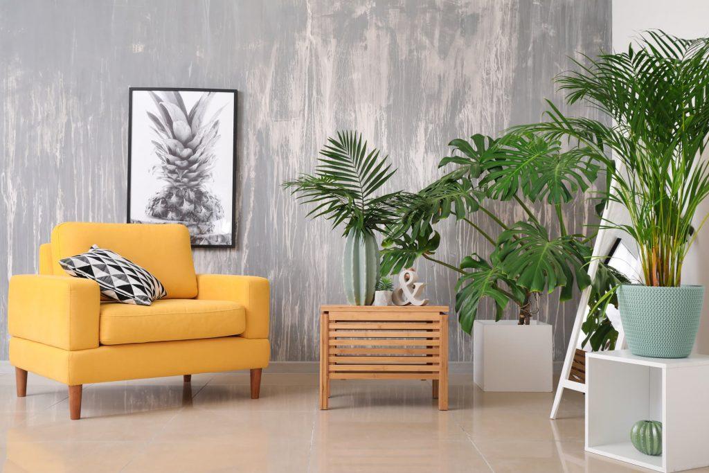 Decoración con plantas ideas