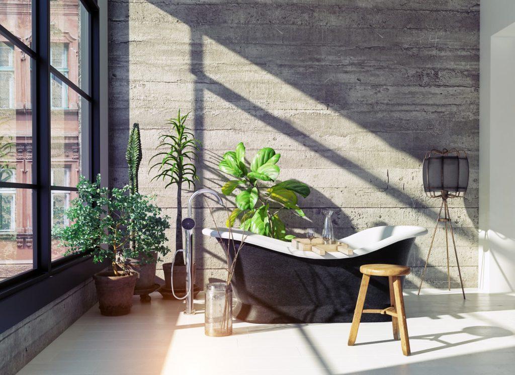 Decorar salón con plantas